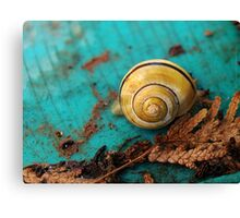Yellow Snail House Canvas Print