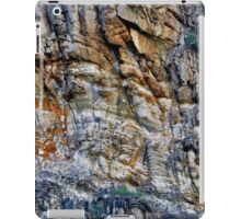 Rock Chasm II iPad Case/Skin