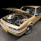 Dimitri's Turbo LS VL Holden Commodore by HoskingInd