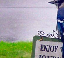 Enjoy the Journey Blue Jay Sticker