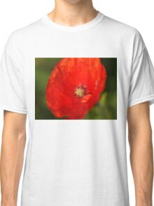 Red poppy flower Classic T-Shirt