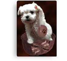 MALTESE PUPPY-JUST PLAYIN WITH MY YO-YO - I WONDER IS ANYBODY WATCHING LOL /PICTURE/CARD Canvas Print