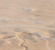 Desert in Palmira Sticker