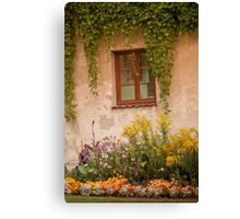 garden window   Canvas Print