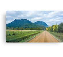 Acacia Lane and the Cathedral Ranges Metal Print