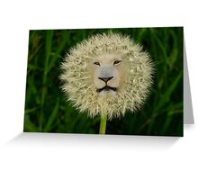 ☝ ☞DANDELION PICTURE/CARD~ DANDY LION LOL☝ ☞ Greeting Card