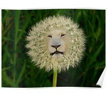 ☝ ☞DANDELION PICTURE/CARD~ DANDY LION LOL☝ ☞ Poster