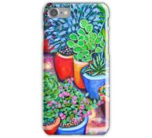 Down the Garden Path iPhone Case/Skin