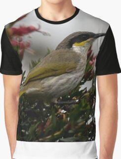 Singing Honeyeater - Lichenostomus virescens Graphic T-Shirt