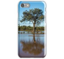 Happy Tree - The Dowling Track iPhone Case/Skin