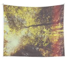 Butterfly valley Wall Tapestry