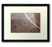 Wet road outdoors with pink petals and white line Framed Print