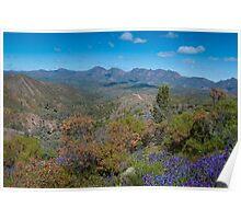 Southern Flinders Ranges/Bunyeroo Poster