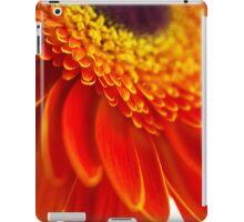 Orange flower background with close-up gerbera iPad Case/Skin
