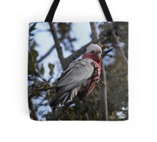 Pink Galah - Eolophus roseicapillus Tote Bag
