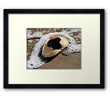 Empty Crab Shell Framed Print