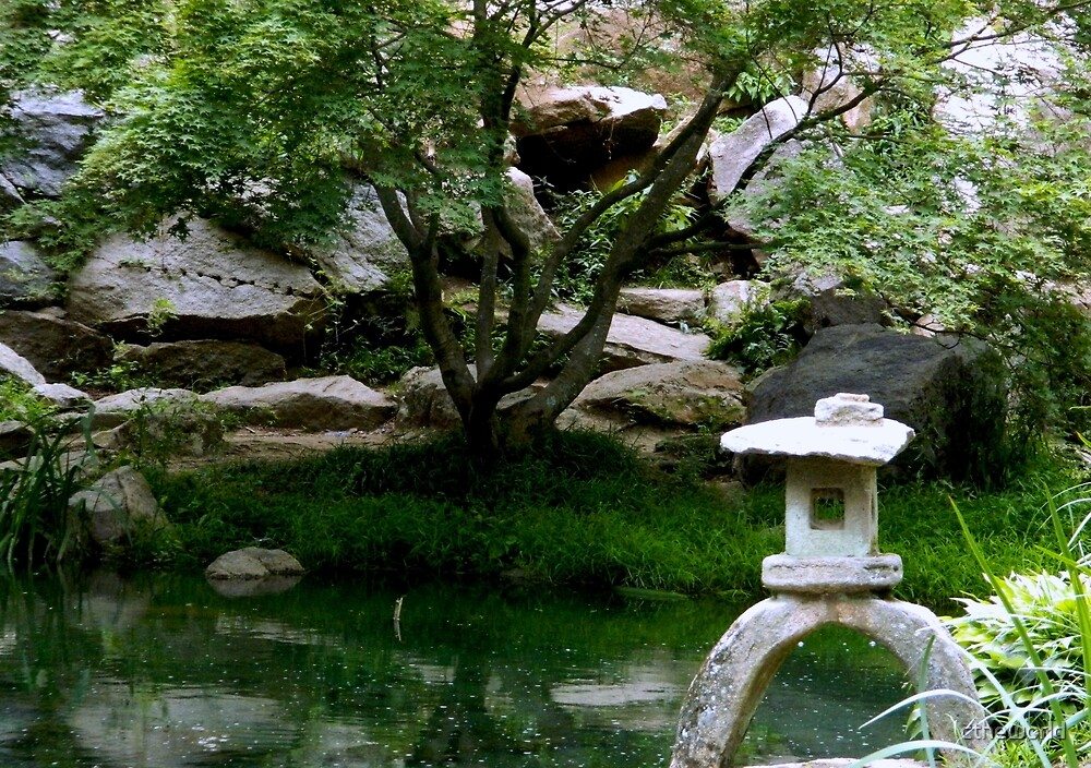 Serenity in A Japanese Garden by ctheworld