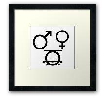 3 genders Framed Print