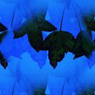 Autumn - Hues of Blue by Michelle Munday