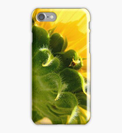 Sunflower    ^ iPhone Case/Skin