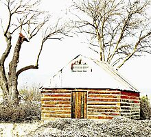 Snow Cabin and the Dead Trees of Winter by Winona Sharp