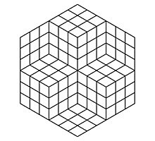 Vasarely cubes Photographic Print