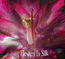 Flowers in Silk by Winona Sharp