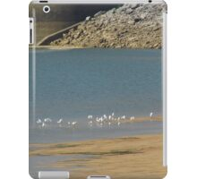 Herons On the Sandbar iPad Case/Skin