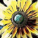 Golden Daisy Flower by Phil Perkins
