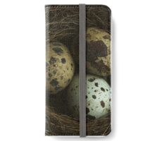 Birds Nest and Eggs iPhone Wallet/Case/Skin