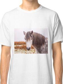 Dartmoor Pony Classic T-Shirt