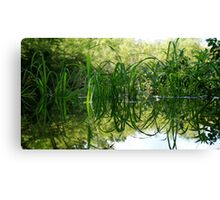 Grass Reflecting in the Water Canvas Print