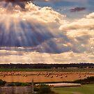 Waxham, Norfolk, UK by Mark Snelling
