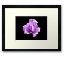 Dreamy Blue Moon Rose - Black Background Framed Print