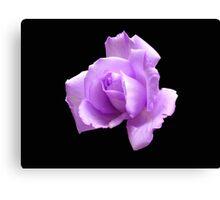 Dreamy Blue Moon Rose - Black Background Canvas Print