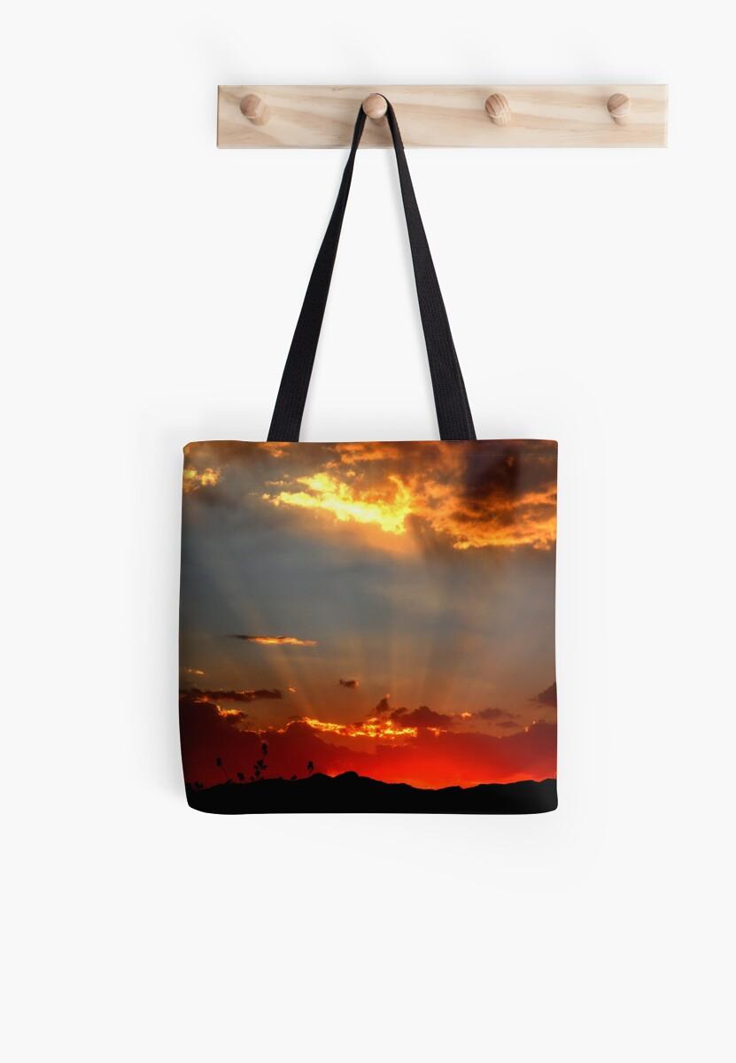 Extreme Sunset by Winona Sharp