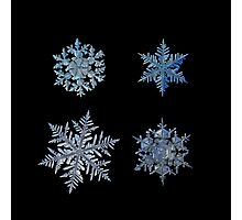 Four snowflakes on black background Photographic Print