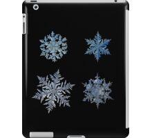 Four snowflakes on black background iPad Case/Skin