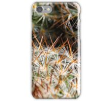 Mexican Round Cactus iPhone Case/Skin