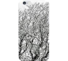 Dance To The Music Of The Wind And The Waves iPhone Case/Skin