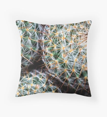 Mexican Round Cactus Throw Pillow