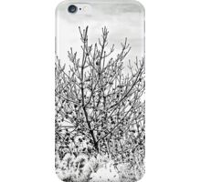 A Casualty Of Megastorm Sandy - Island Beach State Park - New Jersey - USA iPhone Case/Skin