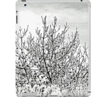 A Casualty Of Megastorm Sandy - Island Beach State Park - New Jersey - USA iPad Case/Skin