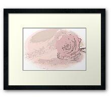 Pink Rose And Linen - Digital Art Work Framed Print