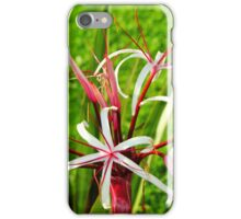 Morning bloom, (Lily) iPhone Case/Skin