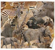 African collage Poster