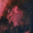 Pelican Nebula (LHaRGB) by Jeff Johnson