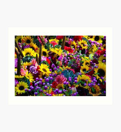 FARMERS MARKET FLOWERS Art Print