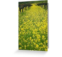Spring in the Vinyard Greeting Card