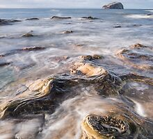 Bass & Tide by Christopher Cullen
